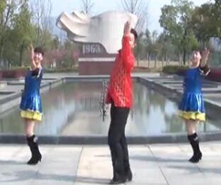 楠楠广场舞 希望你能好好的生活 含背面动作分解教学