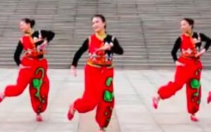 立华广场舞 飞歌