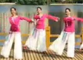 江南柳 春英广场舞  含背面动作分解教学