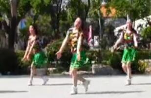 刘荣广场舞 画里含山 含背面动作分解教学