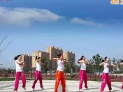 舞动旋律广场舞《黄土高坡》教学视频