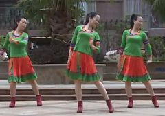 杨丽萍广场舞《情歌去南方》教学视频