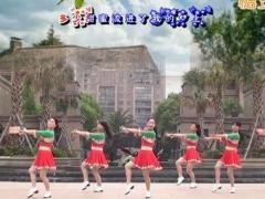茉莉广场舞《水月亮》教学视频