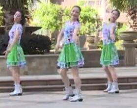 杨丽萍广场舞 采槟榔16步入门舞 含背面动作分解教学