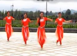 印巴风情王梅广场舞