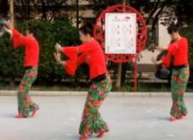 天姿广场舞 秀美三都 视频和舞曲下载