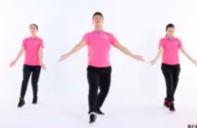 我变了我没变 王广成健身广场舞