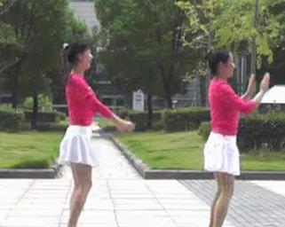 动动广场舞 月影 DJ健身舞含教学