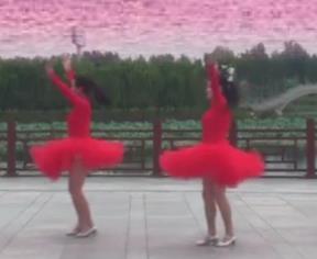 《今天是你的生日》立华广场舞 歌曲下载
