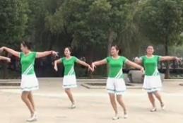 美久广场舞《最贵是健康》教学视频下载