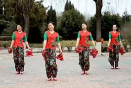 2018云裳廣場舞《豐收中國》手絹舞附教學