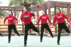 杨丽萍广场舞【唐古拉】活力健身操