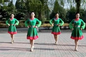 云裳广场舞《情在草原飞》花语老师原创附教学-视频下载