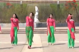 美久廣場舞《女兒情》柔美古典舞附導師教學-視頻下載