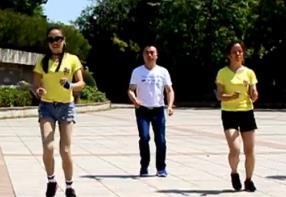 凤凰香香广场舞《瘦成一道闪电》原创附分解-视频下载