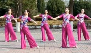 云裳廣場舞《種花》視頻和舞曲下載