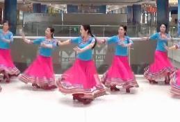 应子广场舞 水边的格桑梅朵 视频下载(维族藏族多元素舞蹈)