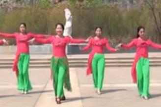 美久广场舞《歌在飞》简单大方附导师教学