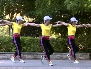 杨丽萍广场舞【策马奔腾】动感32步入门舞蹈