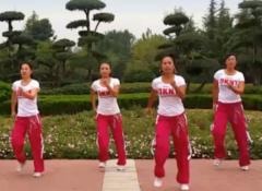舞动旋律2007健身队广场舞玩腻正反面含教学 健身操