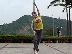 芭蕾形体舞正面演示 媛舞曲工作室樊老师表演