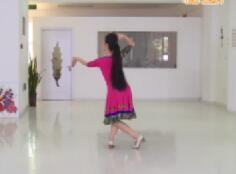 艺莞儿广场舞 学跳傣族舞 第八讲 含视频下载