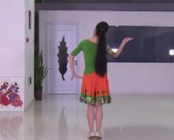 艺莞儿广场舞 学跳傣族舞 附视频下载