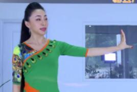 艺莞儿广场舞 学跳傣族舞 第二讲